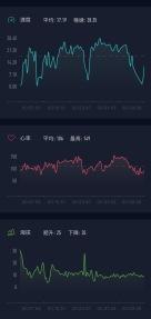 2017年大稻埕煙火之小米運動圖表00004