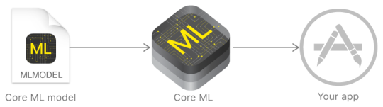 Using Core ML Model.png