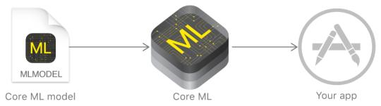 Using Core ML Model.png